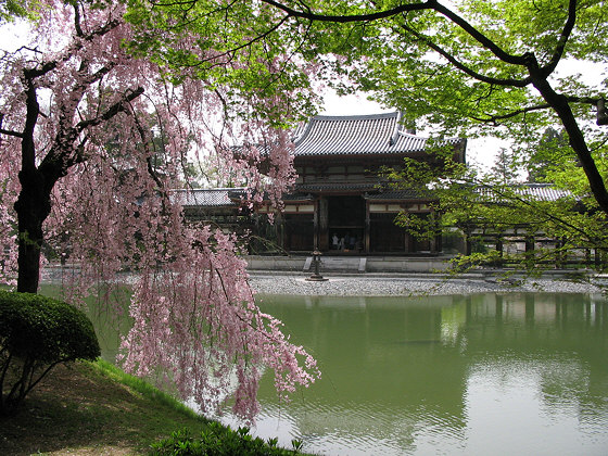 Japanese temples: Byodo-in