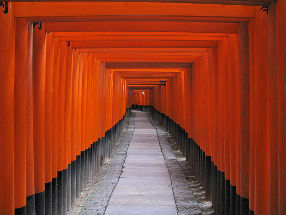 Fushimi-inari Shrine Torii