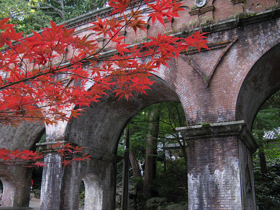 Japanese maple: Nanzenji aquaduct