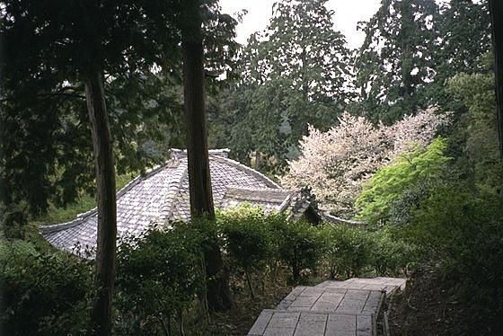 Jurinji Temple Hondo
