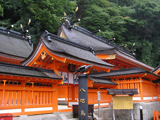Kumano-nachi Taisha Grand Shrine Crow