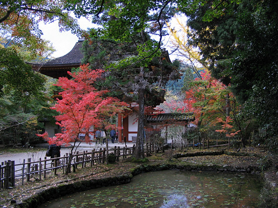 Muroji Temple Pond