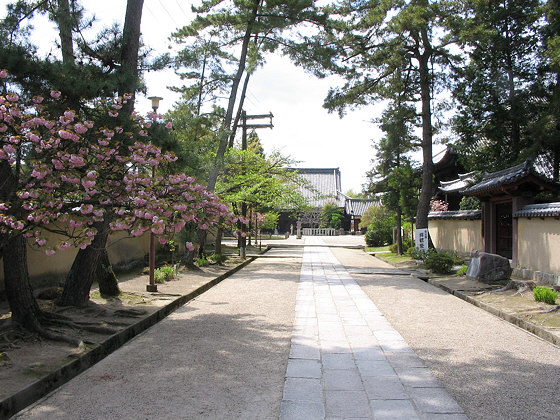 Seven Great Temples of Nara: Saidaiji