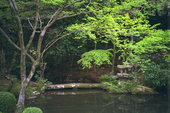 Sanzen-in Temple Pond
