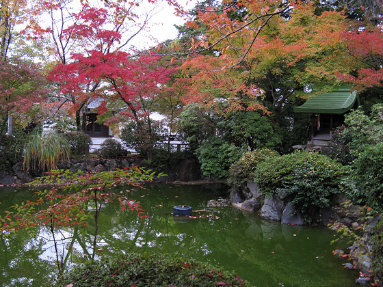 Shinnyodo Temple Pond