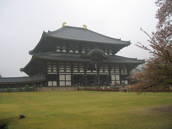 Todaiji Temple Hondo in rain