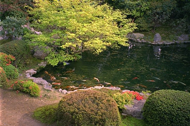 Zuishin-in Temple Pond